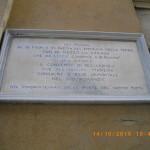 IMGP6490